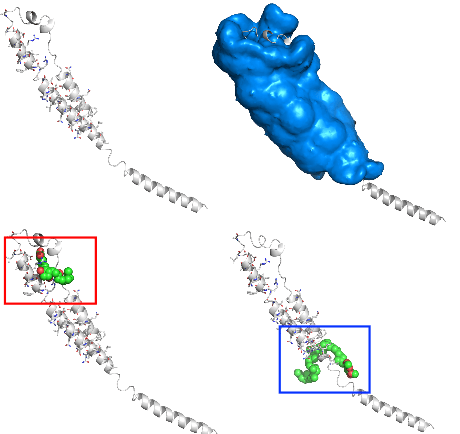 Combating Ebola with Repurposed Therapeutics Using the CANDO Platform.png